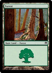 Forest (71)