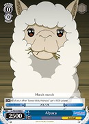 Alpaca - LL/W24-E088 - C