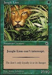 Jungle Lion