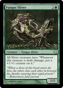 Fungus Sliver - Foil