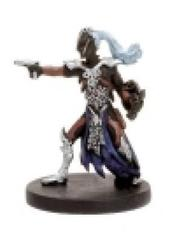 Drow Warrior