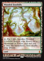 Wooded Foothills - Foil (Zendikar Expedition: Battle for Zendikar Lands)