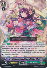 Alstroemeria Flower Maiden, Elana - G-BT10/101EN - C