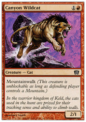 Canyon Wildcat - Foil