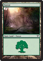 Forest (242) - Foil on Ideal808