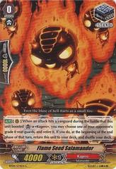 Flame Seed Salamander - BT04/074EN - C
