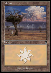 Plains (333) - Foil on Channel Fireball