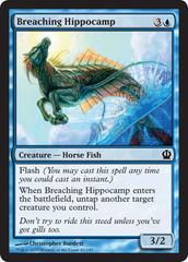 Breaching Hippocamp - Foil on Channel Fireball