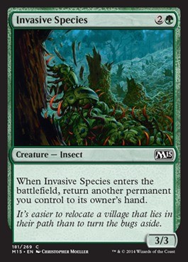 Invasive Species - Foil
