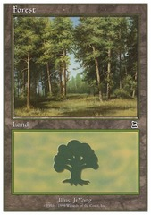 Forest (P3K/Clearing)