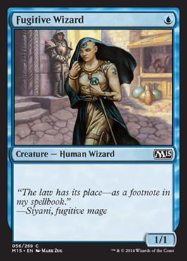 Fugitive Wizard