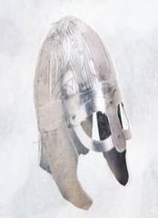 #117 Explorer (Viking)