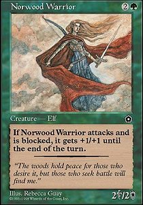 Norwood Warrior