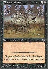 Skeletal Snake