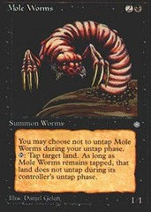 Mole Worms