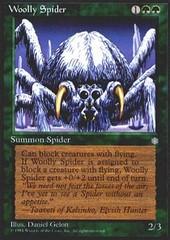Woolly Spider