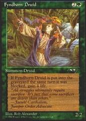 Fyndhorn Druid [Purple Robe]