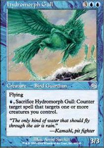 Hydromorph Gull