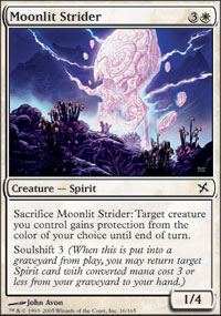 Moonlit Strider