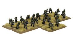 Engineer-Sapper Platoon - Infantry, Platoon