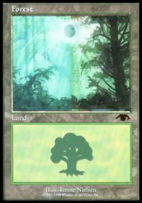 Forest - Guru
