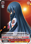 Skilled Martial Artist, Shiina - AB/W31-E064 - R