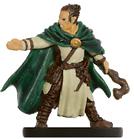 Male Half-Elf Druid