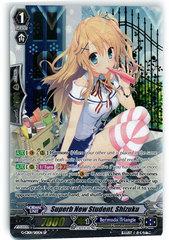 Superb New Student, Shizuku - G-CB01/S10EN - SP