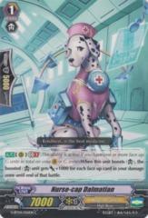 Nurse-cap Dalmatian - G-BT04/056EN - C on Channel Fireball