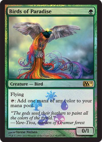 Birds of Paradise - Box Promo