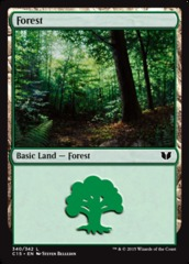 Forest (340)