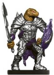 Dragonborn Paladin of Bahamut