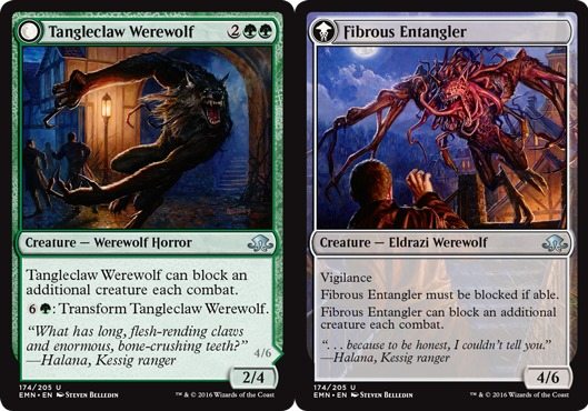 Tangleclaw Werewolf // Fibrous Entangler - Foil