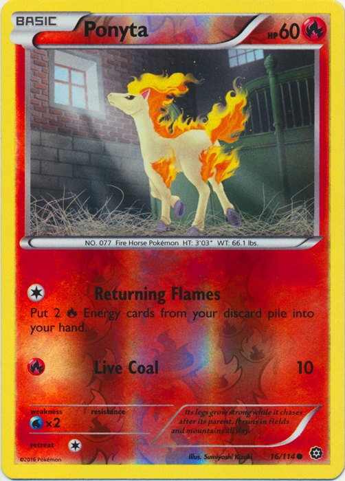 Ponyta - 16/114 - Common - Reverse Holo