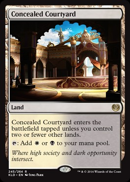 Concealed Courtyard