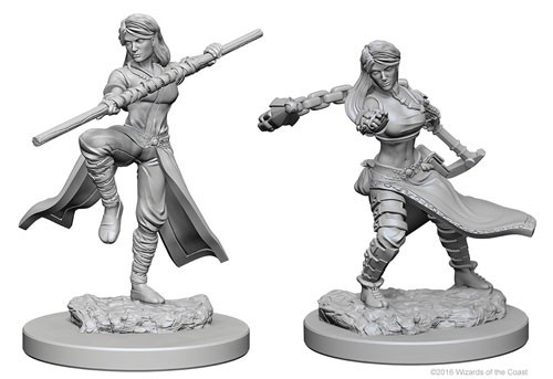 D&D Unpainted Minis - Human Female Monk - Dungeons and