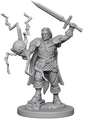Pathfinder Deep Cuts Unpainted Miniatures: W1 Human Male Cleric(replaced)