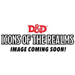Dungeons And Dragons: Icons Of The Realms - Epic Level Starter
