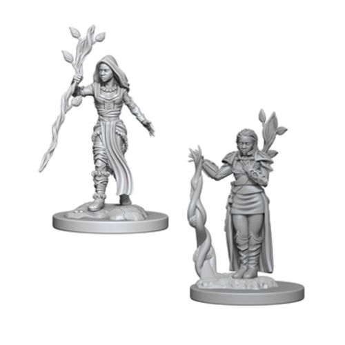 Nolzurs Marvelous Miniatures - Human Female Druid