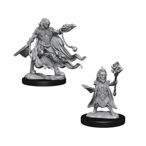 Pathfinder Battles Unpainted Minis - Evil Wizards