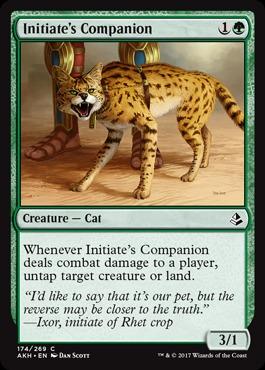 Initiates Companion