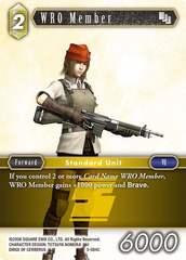 WRO Member - 3-084C