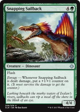 Snapping Sailback