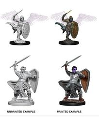 Nolzur's Marvelous Miniatures - Aasimar Male Paladin
