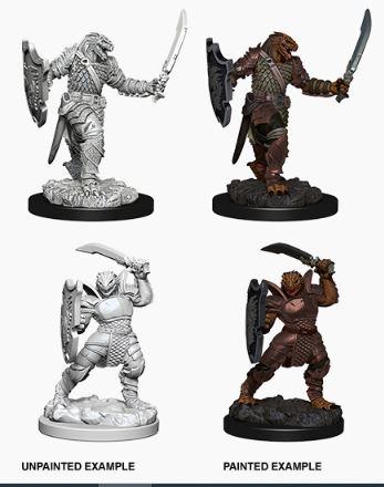 Nolzurs Marvelous Miniatures - Dragonborn Female Paladin