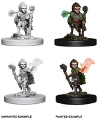 Pathfinder Battles Unpainted Minis - Gnome Male Druid