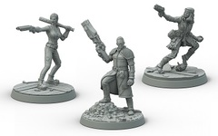 Fallout Survivors Boston Companions Set