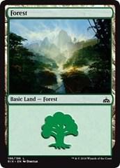 Forest - Foil