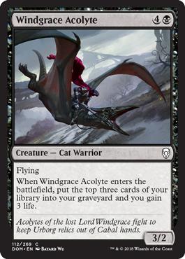 Windgrace Acolyte - Foil