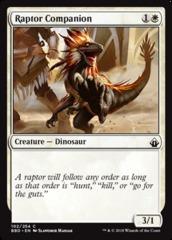 Raptor Companion